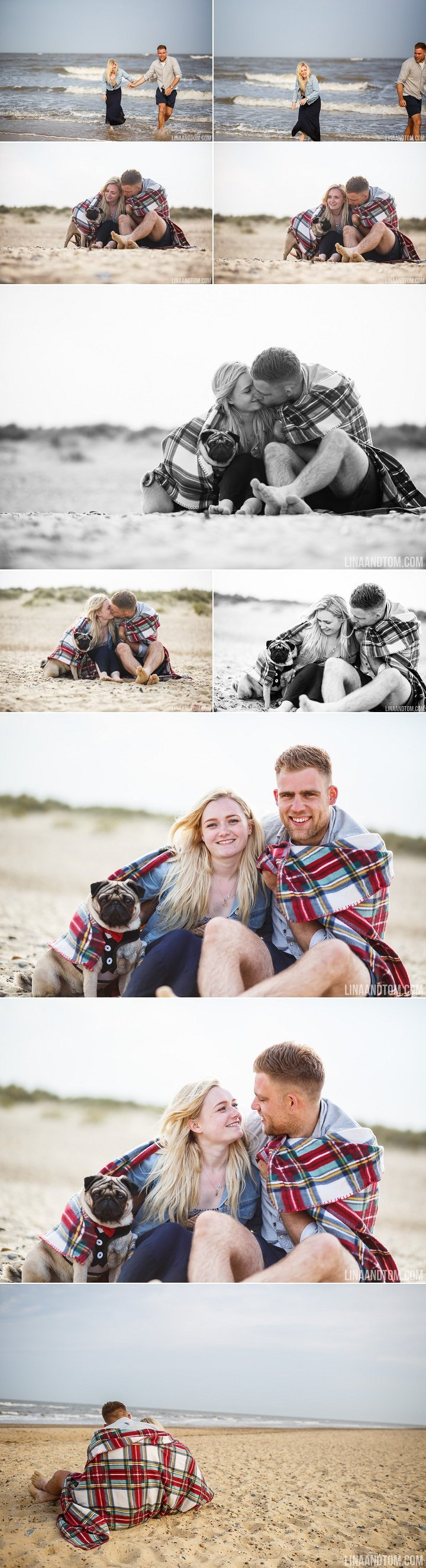 Southwold beach pre wedding shoot with cute pug