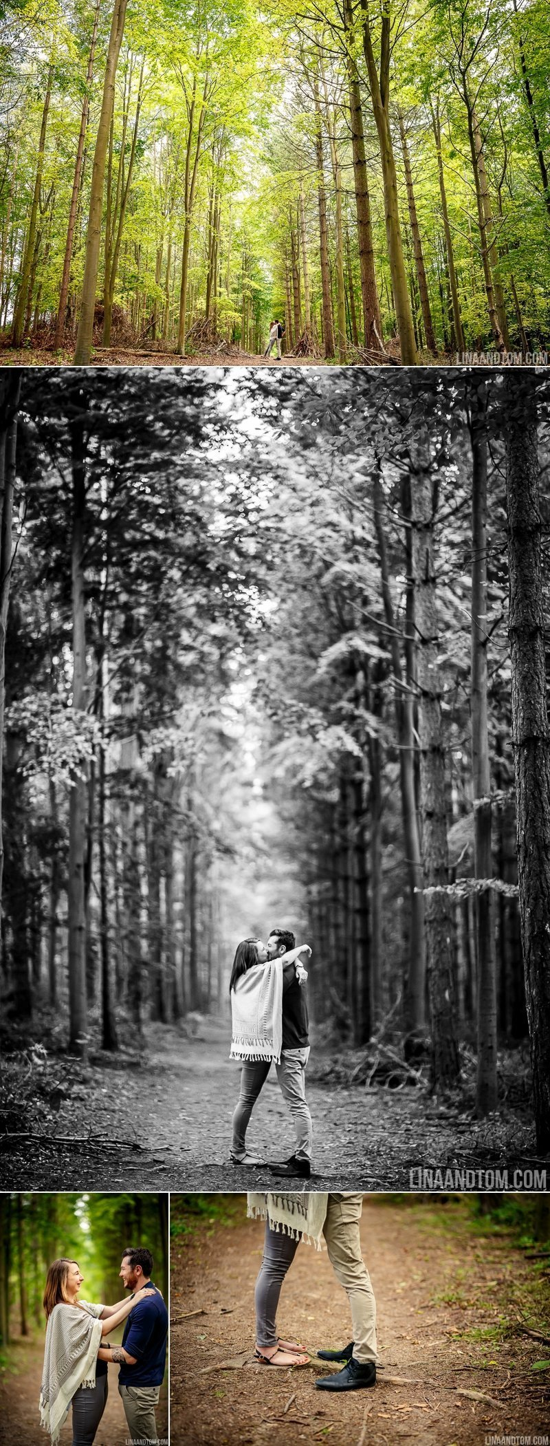 pre wedding shoot Therfield Heath