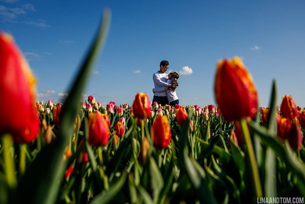 Tulip field Instagram photography - engagement shoot